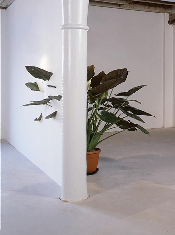 plant kunst